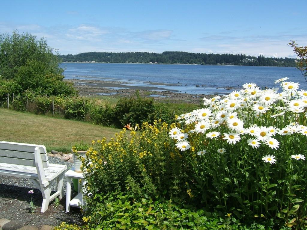 Summer View of Comox Bay